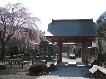 雲居寺 山門